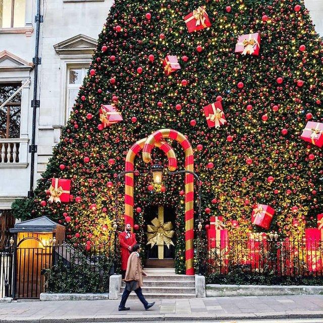 Фотограф показала найкрасивіші двері Лондона - фото 300071