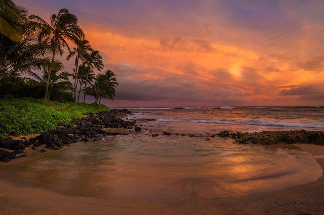 Захопливі пейзажі світу від Перрі Шелат: яскраві фото - фото 300275