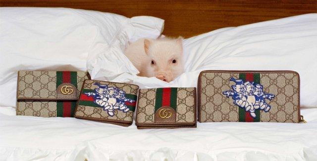 Маленькі свинки стали героями кампейну Gucci - фото 300336