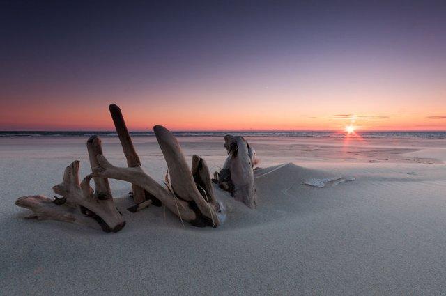 Фотограф показав таємничу красу Балтійського моря у Польщі - фото 302318
