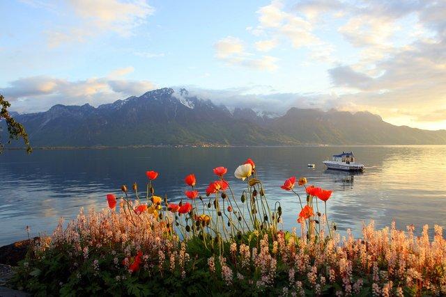 Відпочинок взимку: чому варто поїхати у Швейцарію - фото 303122