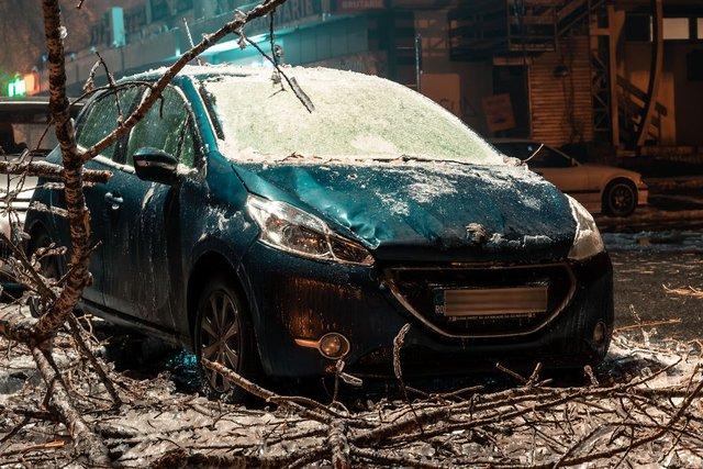 Крижана буря у Бухаресті: вражаючі фото замерзлого міста - фото 304338