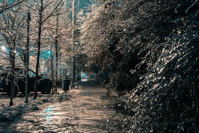 Крижана буря у Бухаресті: вражаючі фото замерзлого міста - фото 304339