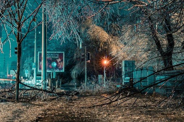 Крижана буря у Бухаресті: вражаючі фото замерзлого міста - фото 304343