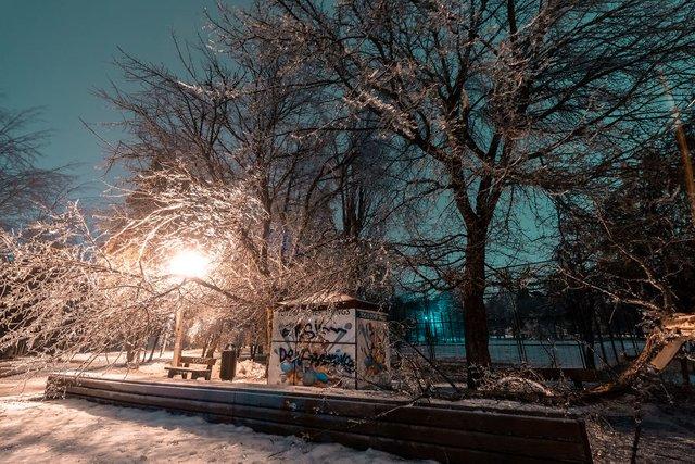 Крижана буря у Бухаресті: вражаючі фото замерзлого міста - фото 304346