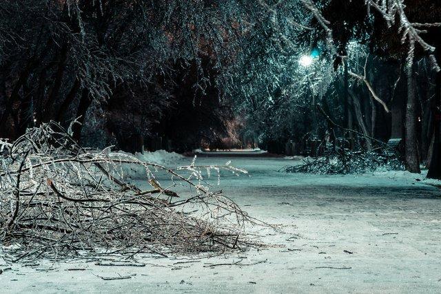Крижана буря у Бухаресті: вражаючі фото замерзлого міста - фото 304348