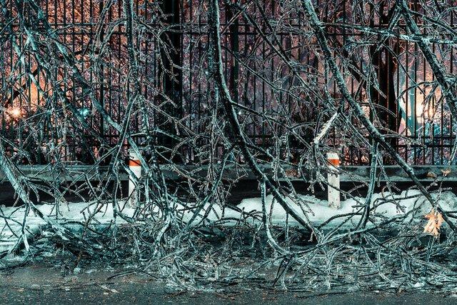 Крижана буря у Бухаресті: вражаючі фото замерзлого міста - фото 304350