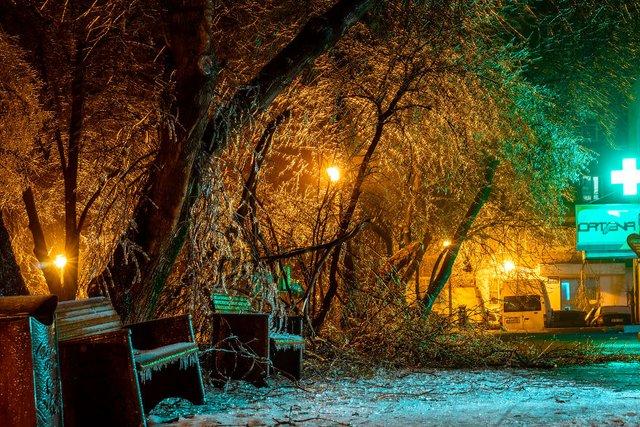 Крижана буря у Бухаресті: вражаючі фото замерзлого міста - фото 304353