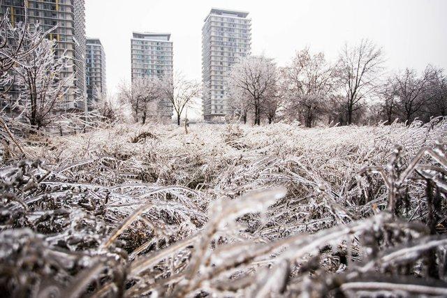 Моторошна краса: як виглядає крижана зима у Румунії - фото 305891