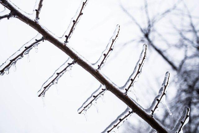 Моторошна краса: як виглядає крижана зима у Румунії - фото 305893