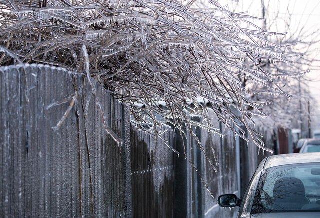 Моторошна краса: як виглядає крижана зима у Румунії - фото 305898