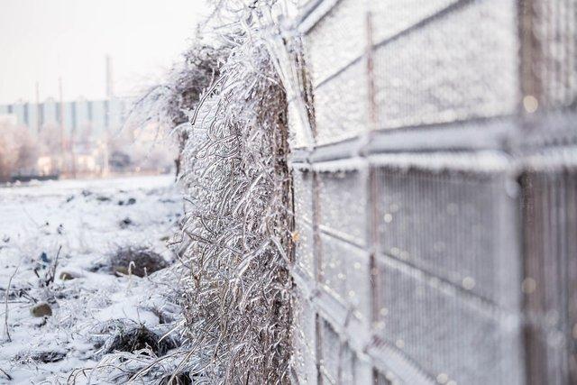 Моторошна краса: як виглядає крижана зима у Румунії - фото 305903