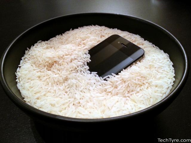 Лайфхак з рисом не працює - фото 306283