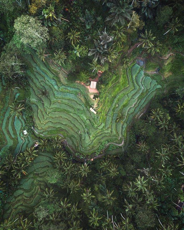 Подорожі Майкла Метті з висоти пташиного польоту: яскраві фото - фото 306446