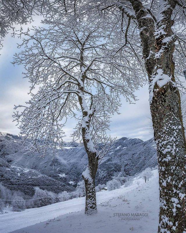 Відпочинок для душі: як виглядають взимку Доломітові Альпи - фото 307913
