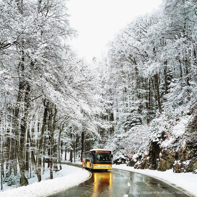 Ефектні фото Швейцарії від Еріки Малоне, які надихають на мандри - фото 308764