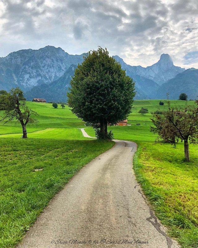 Ефектні фото Швейцарії від Еріки Малоне, які надихають на мандри - фото 308766