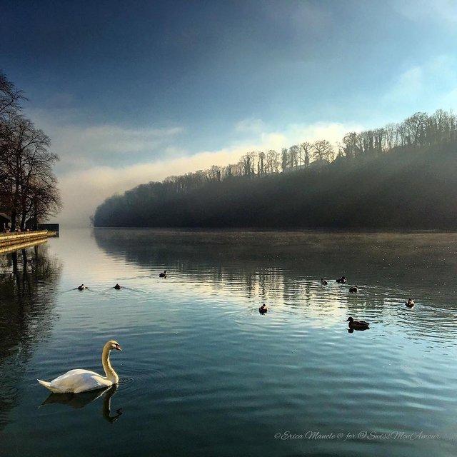 Ефектні фото Швейцарії від Еріки Малоне, які надихають на мандри - фото 308767