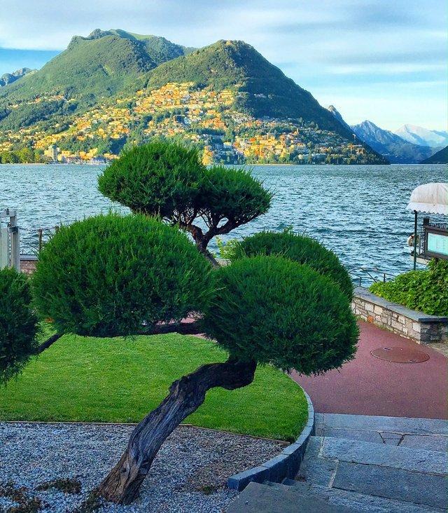 Ефектні фото Швейцарії від Еріки Малоне, які надихають на мандри - фото 308772