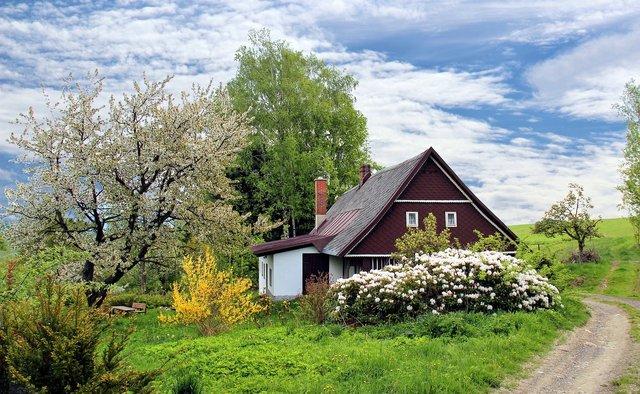 Навесні розквітають дерева - фото 309037