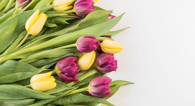 Квіти для Свєтки - фото 310069