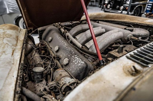Простояв 60 років: у гаражі знайшли Mercedes-Benz 300SL Gullwing - фото 313943