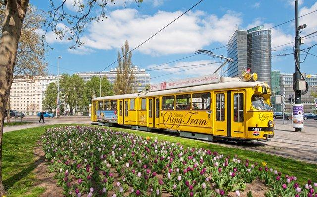 Відень назвали найкомфортнішим містом - фото 314123