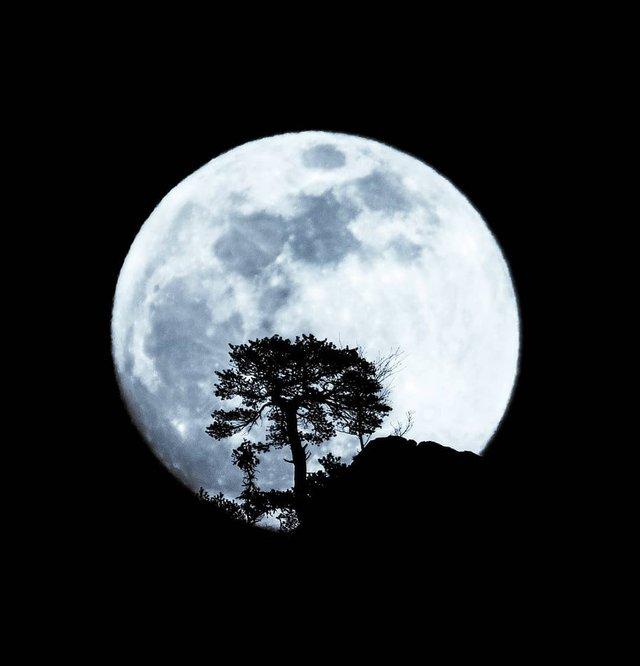 Там, де нас нема: ефектні мандри світом від Андрі Лаукаса - фото 315536
