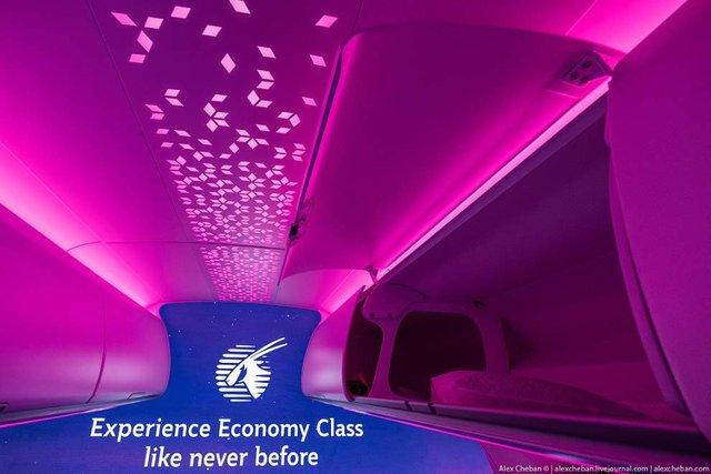 Так виглядає найкомфортніший економ-клас у літаку - фото 317295