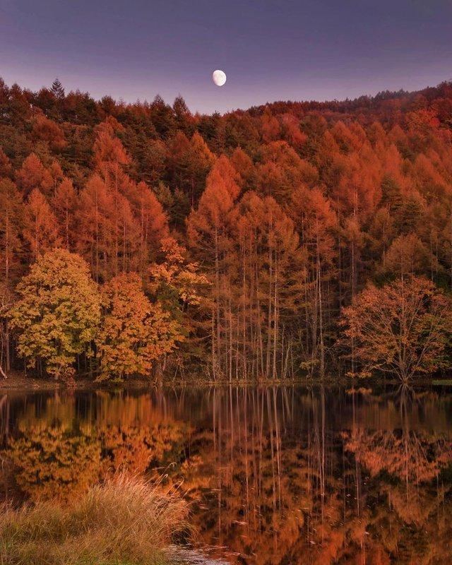 Японія, від якої важко відвести погляд: яскраві фото - фото 317569