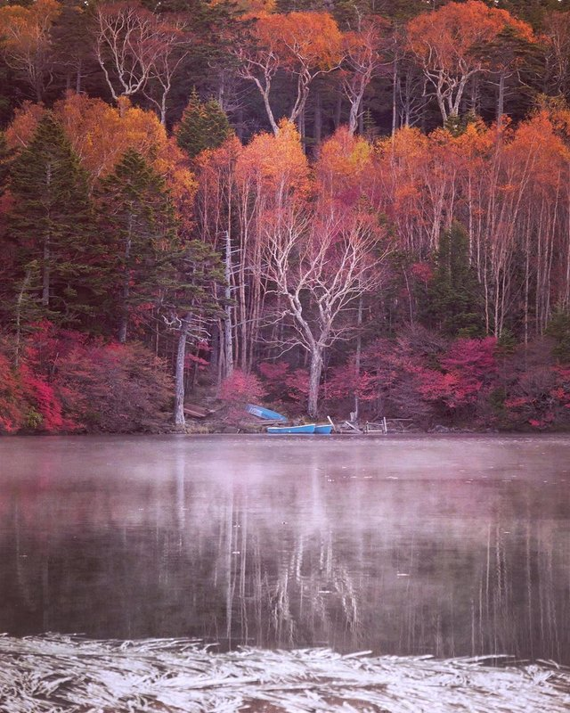 Японія, від якої важко відвести погляд: яскраві фото - фото 317576