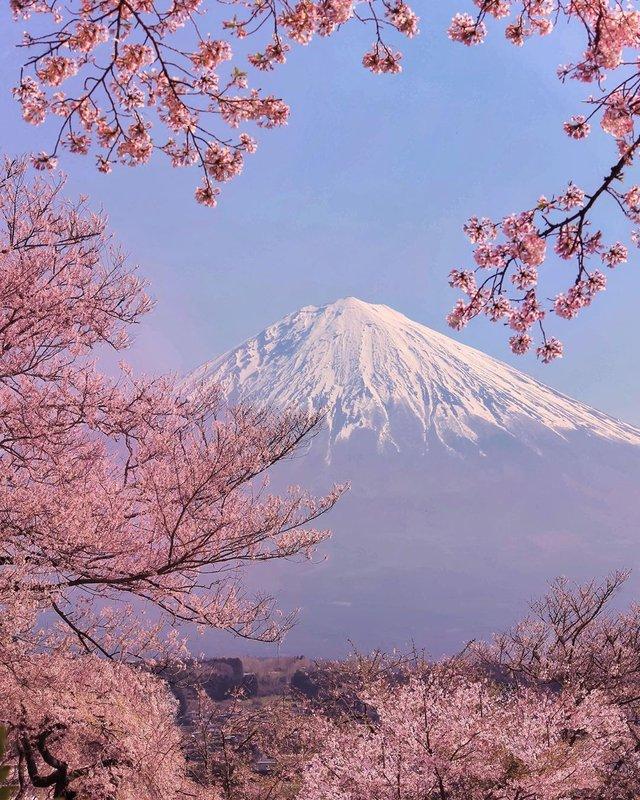 Японія, від якої важко відвести погляд: яскраві фото - фото 317581