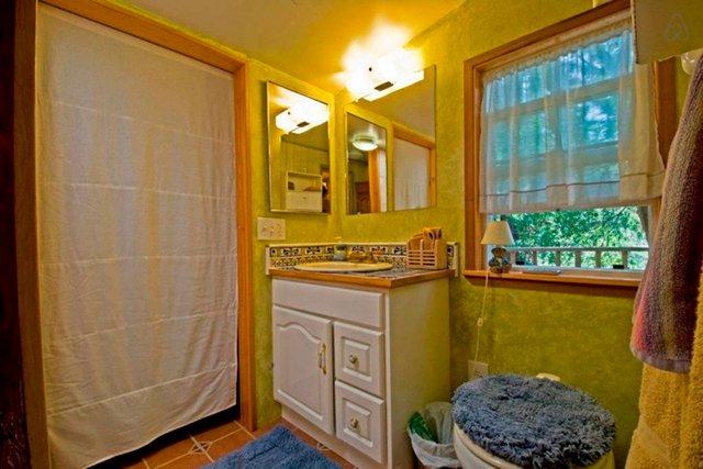 Хижа в лісі стала найпопулярнішим помешканням на Airbnb - фото 318000