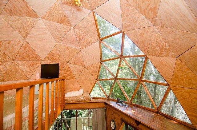 Хижа в лісі стала найпопулярнішим помешканням на Airbnb - фото 318001