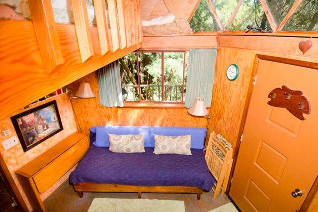 Хижа в лісі стала найпопулярнішим помешканням на Airbnb - фото 318002