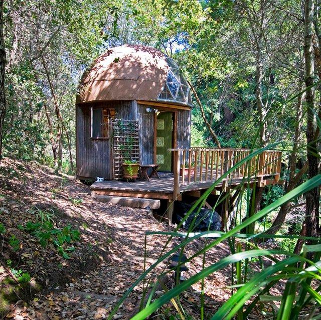 Хижа в лісі стала найпопулярнішим помешканням на Airbnb - фото 318005