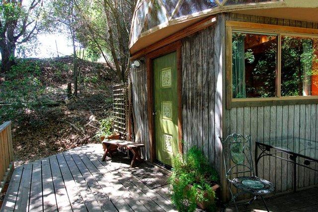 Хижа в лісі стала найпопулярнішим помешканням на Airbnb - фото 318006