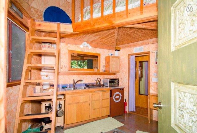 Хижа в лісі стала найпопулярнішим помешканням на Airbnb - фото 318009