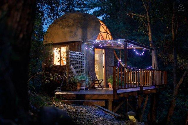 Хижа в лісі стала найпопулярнішим помешканням на Airbnb - фото 318013