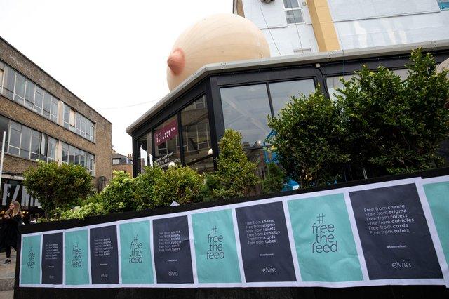У Лондоні з'явилися величезні жіночі груди: фотофакт - фото 318210
