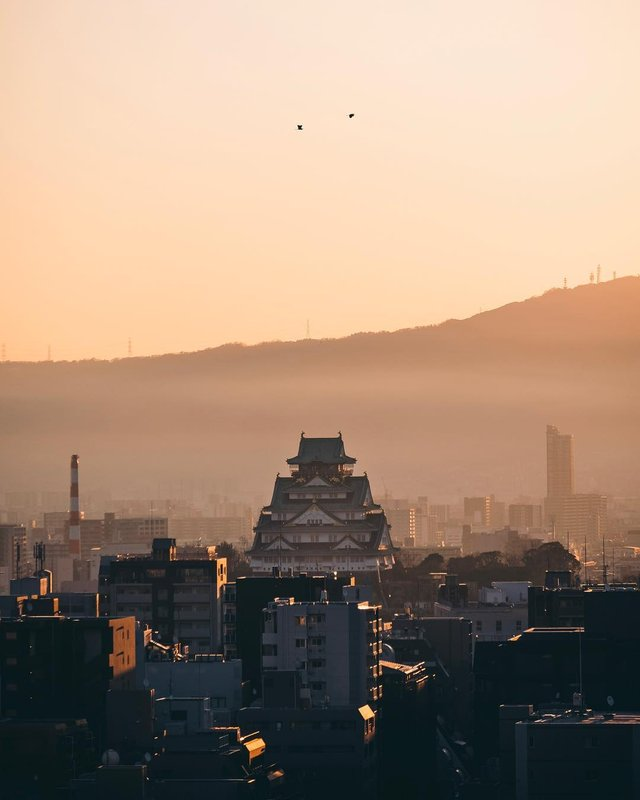 Подорож японськими вулицями: захопливі фото - фото 318782