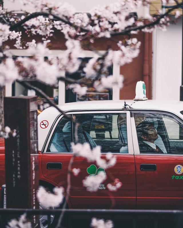 Подорож японськими вулицями: захопливі фото - фото 318787