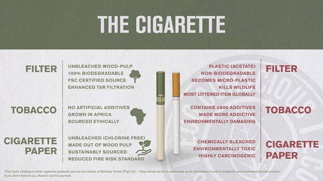 Вперше у світі створили еко-сигарети - фото 321278