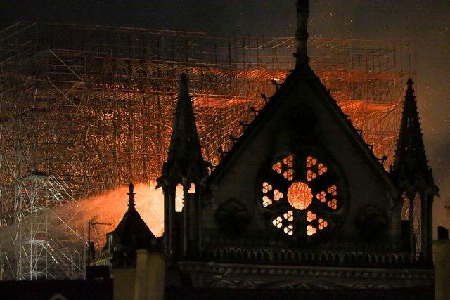 Собор Паризької Богоматері - фото 321626