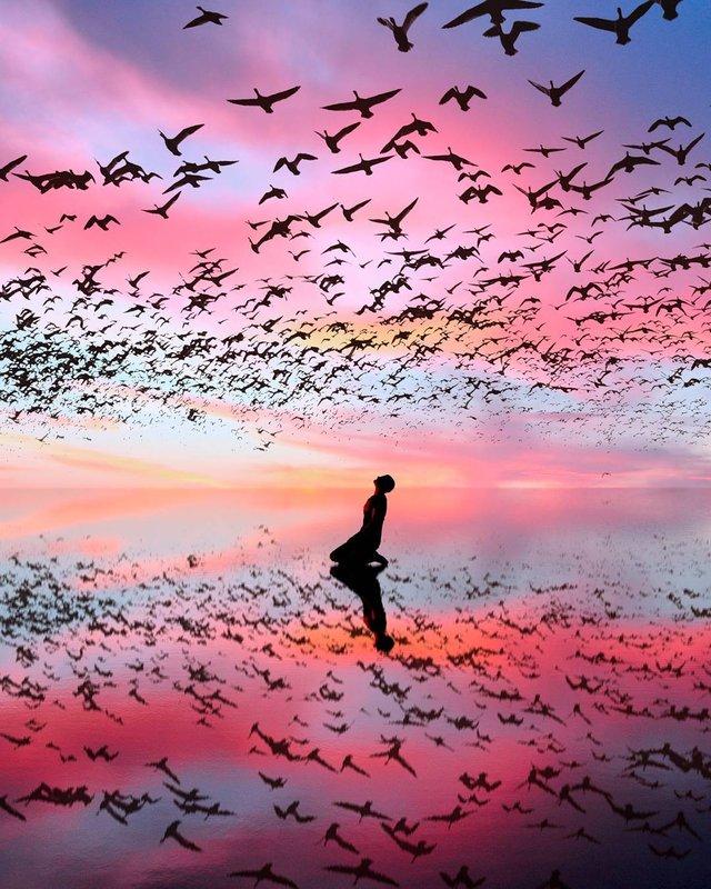 Рожевий сезон: захопливі фото світу у несподіваних кольорах - фото 322134