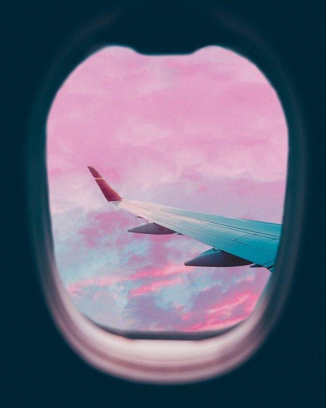 Рожевий сезон: захопливі фото світу у несподіваних кольорах - фото 322135