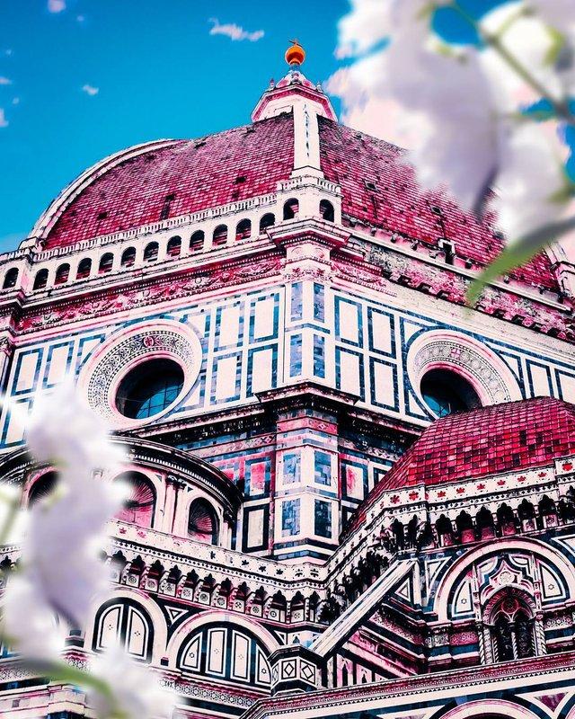 Рожевий сезон: захопливі фото світу у несподіваних кольорах - фото 322136