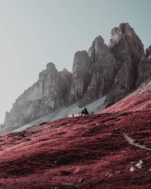 Рожевий сезон: захопливі фото світу у несподіваних кольорах - фото 322138