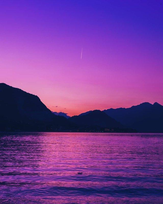 Рожевий сезон: захопливі фото світу у несподіваних кольорах - фото 322145