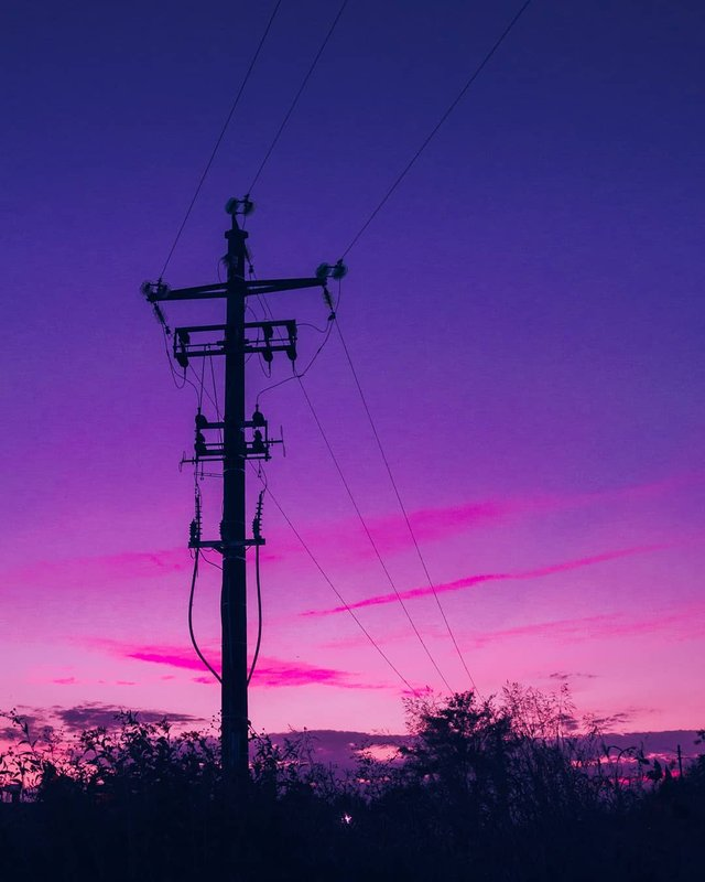 Рожевий сезон: захопливі фото світу у несподіваних кольорах - фото 322150